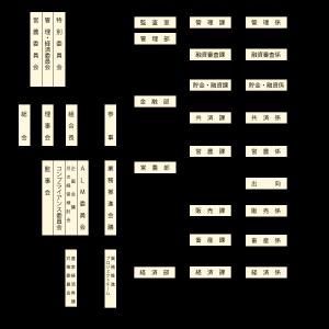 organization28-07
